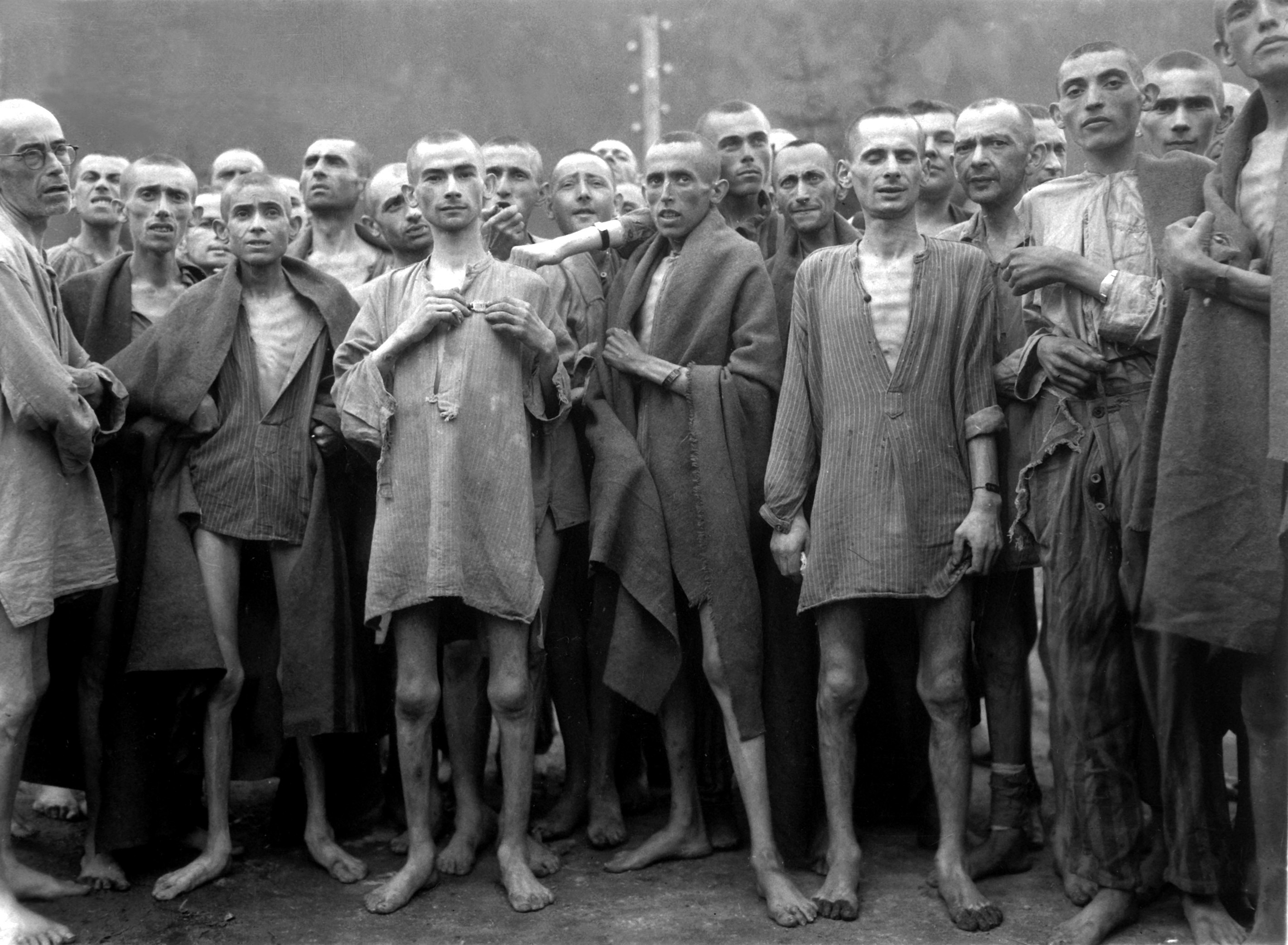 criminals were imprisoned and 5000 were executed from 1945 to 1985.