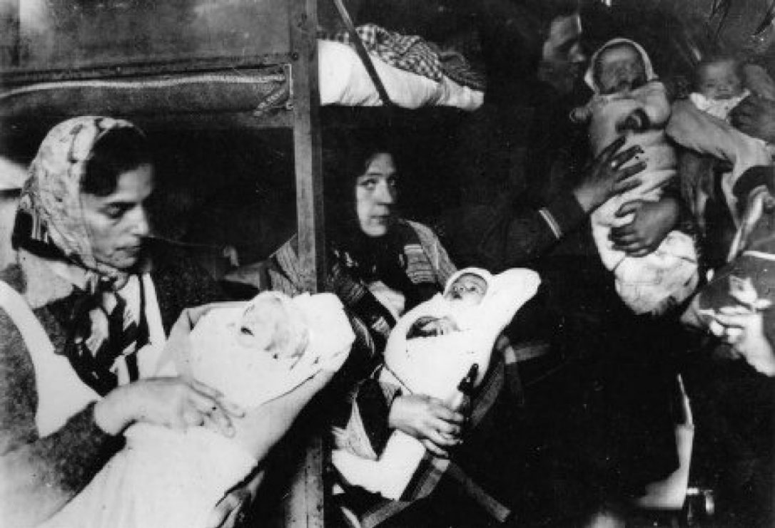 experiments were regularly done on newborn babies