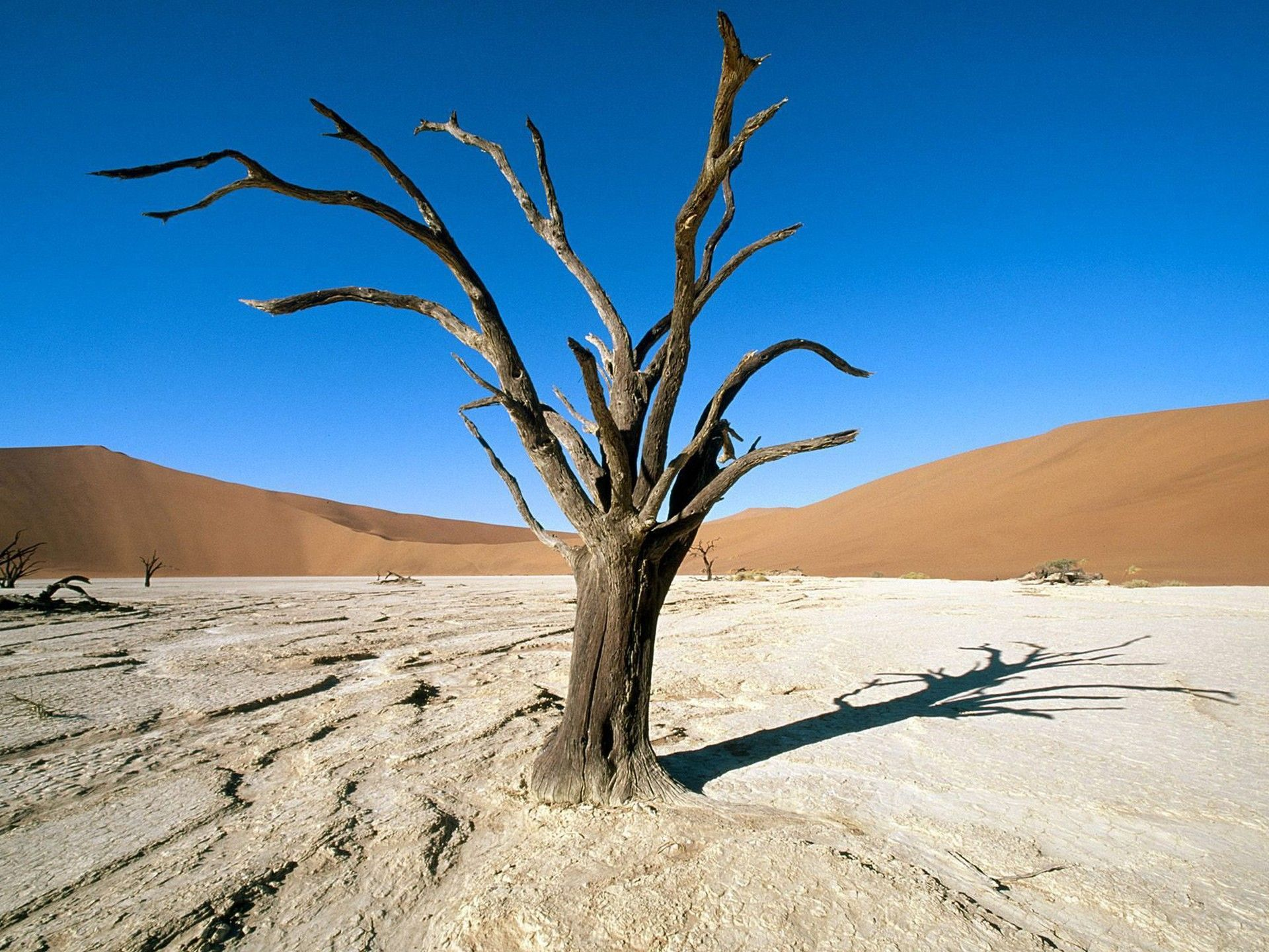 The Namib in Africa