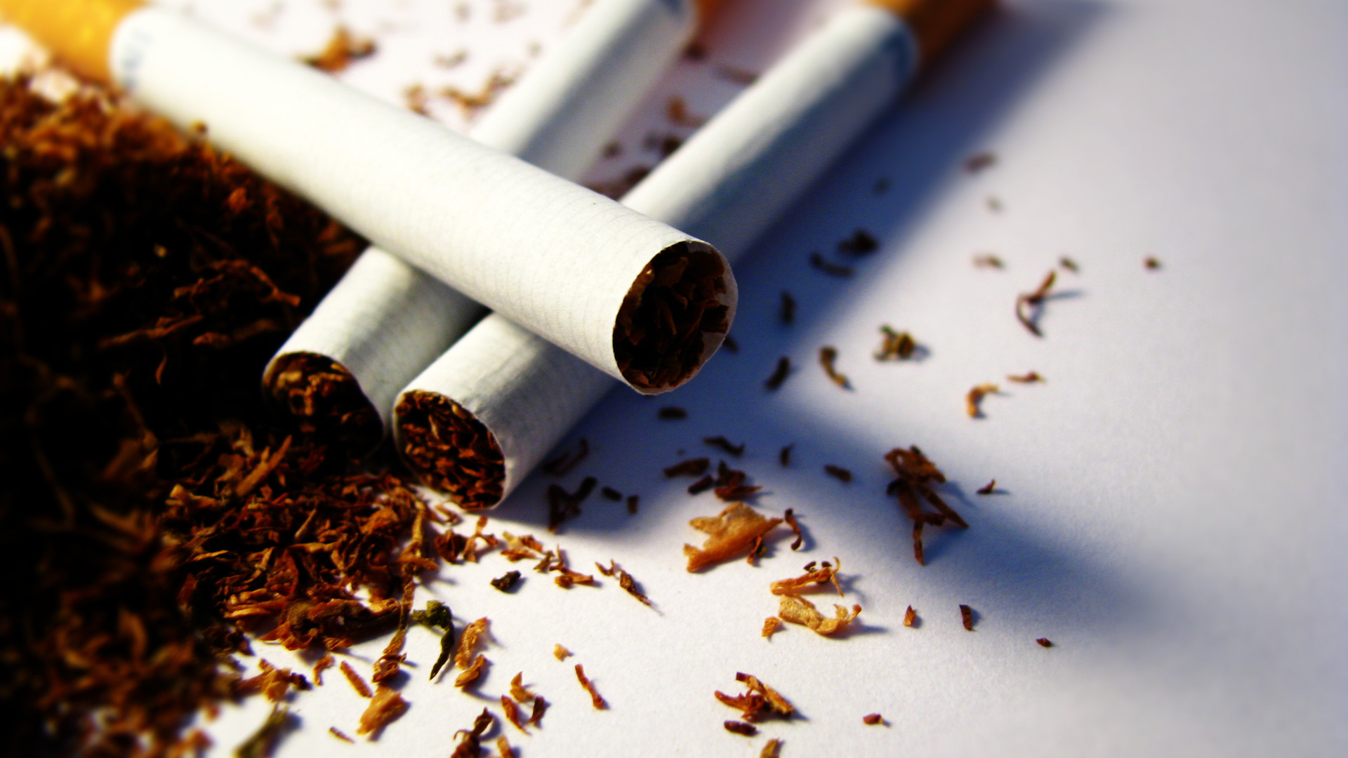 Dominicans practically never smoking, but it is the main exporter of tobacco in the world.