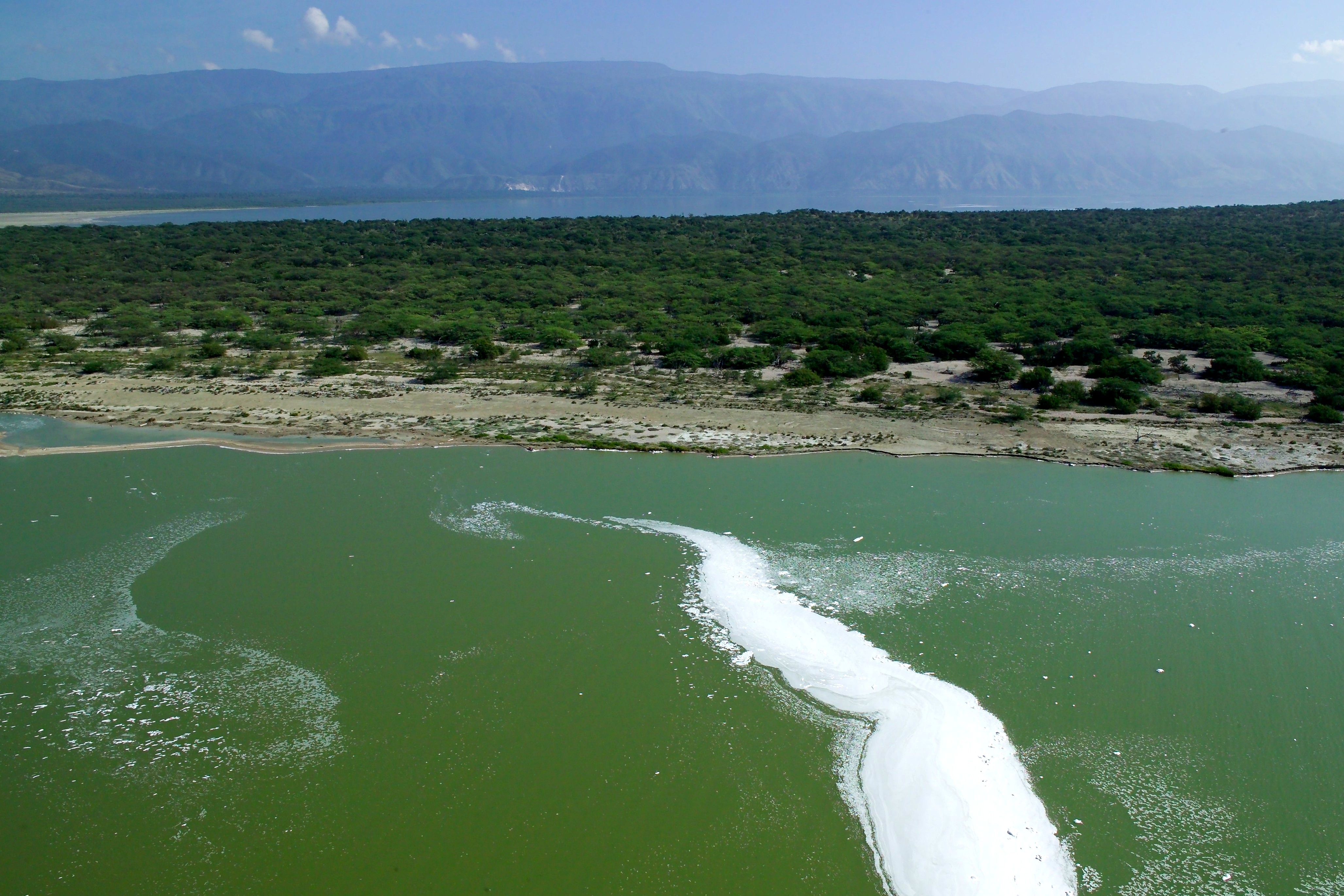 Lago Enriquillo lake in the Dominican Republic is world's largest salt lake with 400 species of the American crocodile.