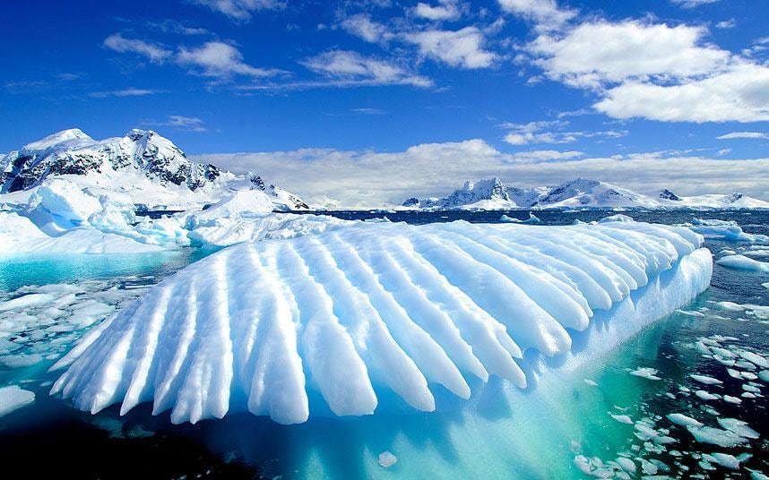 Antarctica is the largest & coolest desert on The Erath