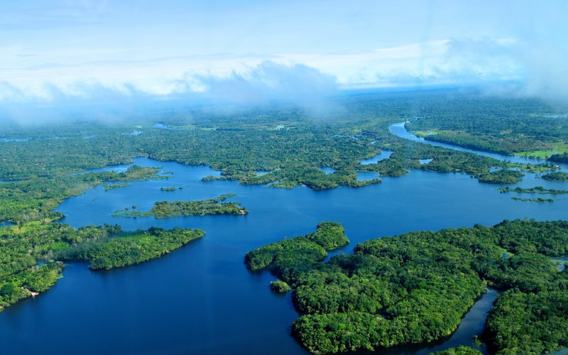 The world's one- fifth fresh water is found in the Amazon basin.