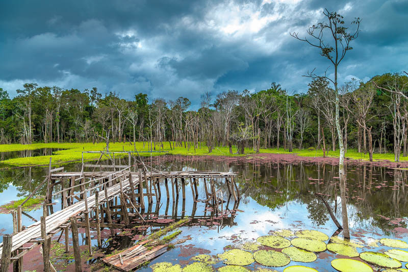 Allradfahrzeuge sind im Pantanal auch abseits der Regenzeit sehr empfehlenswert, da es kaum befestigte Straßen gibt, Brasilien