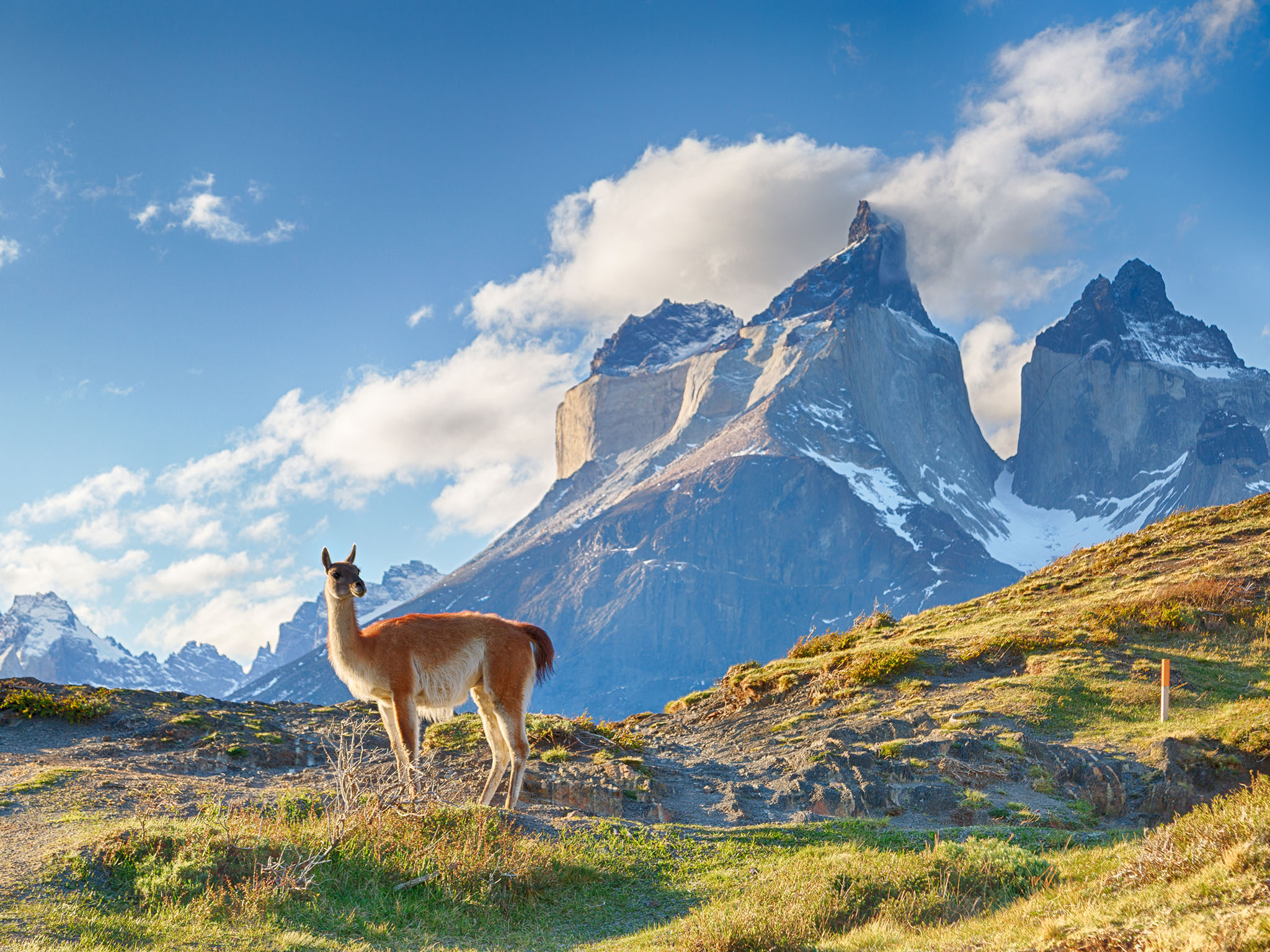 Chilean Patagonia is one of the cleanest places on the planet - Serious Facts