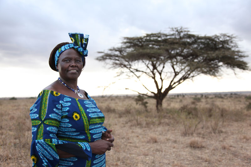 Maathai a first Kenyan environmentalist professor won the Nobel Peace Prize in 2004.