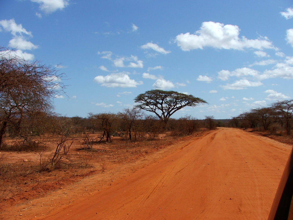 Tsavo is the largest national park in Kenya.