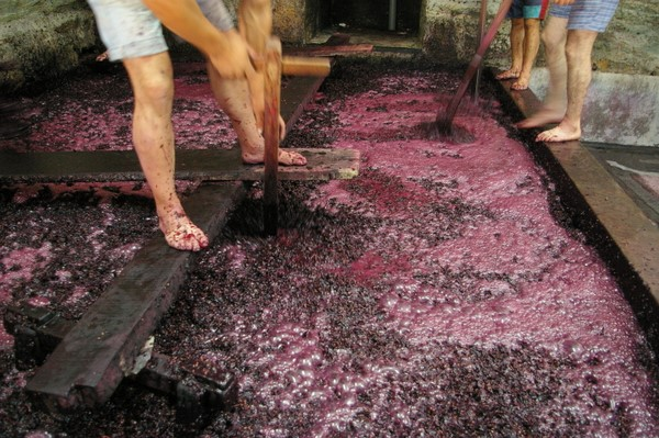 Alcoholic drinks made from fermented grapes in China.