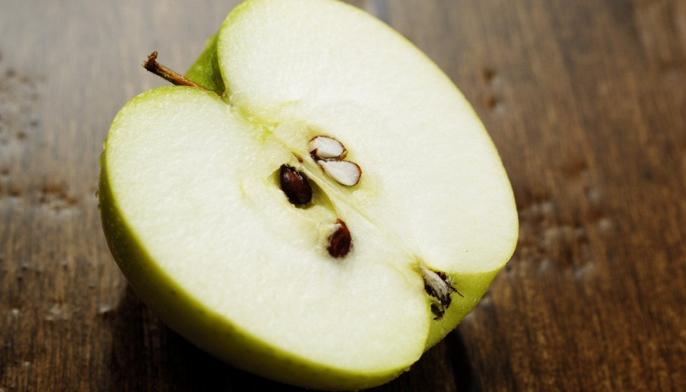 Pear and Apple seeds contain arsenic, which may be deadly to dogs.