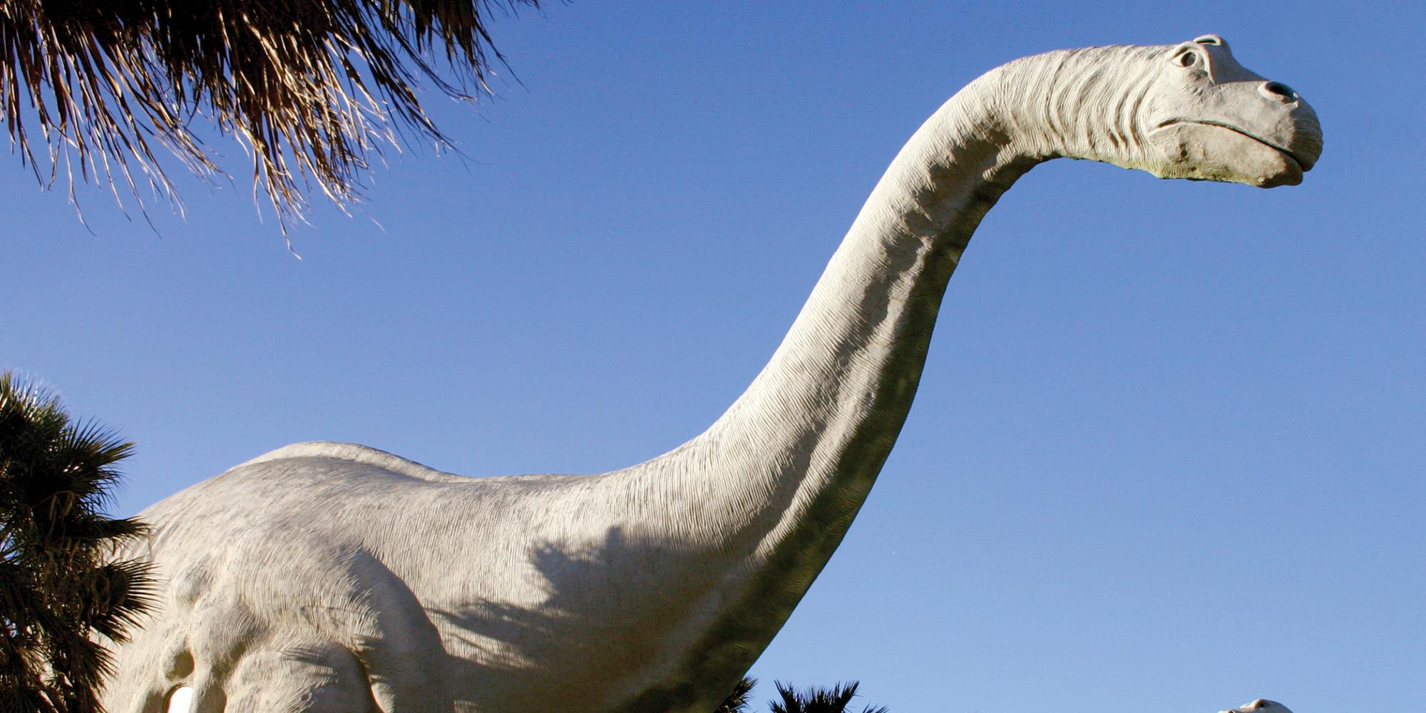 The heaviest dinosaur was Argentinosaurus at 77 tonnes.