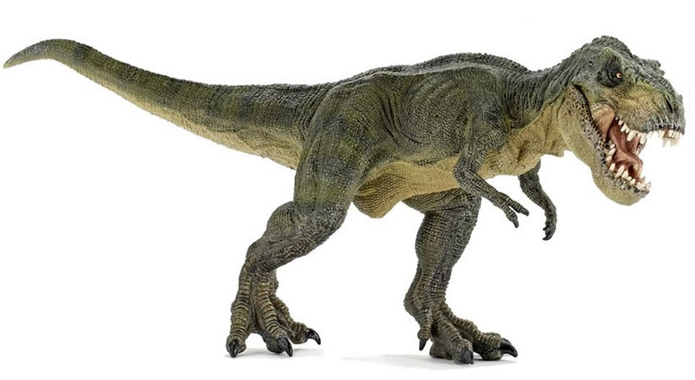 The tail of the dinosaurs helped them to keep their balance while running.