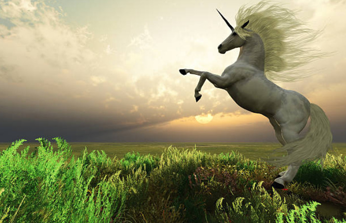 If a unicorn and a Pegasus mate, the babies may become flying unicorns.