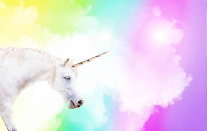 Unicorn horns are called alicorns.