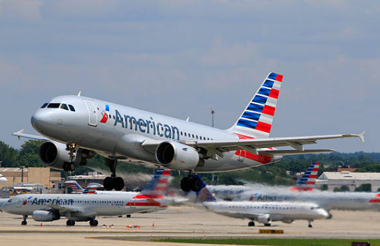 American Airlines is the largest by fleet size.