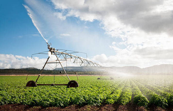 Sixty percent of freshwater withdrawals in China are used for agriculture.