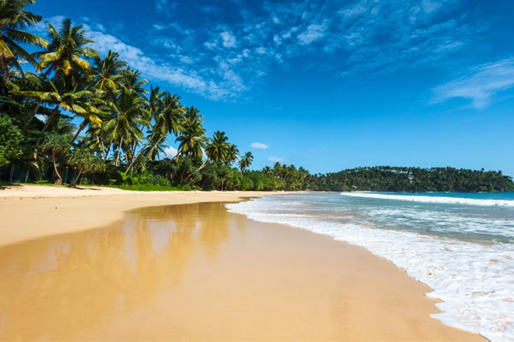 Cuba has over 250 beaches and 200 bays.