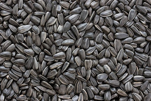Sunflower seeds can be mixed with Rye Flour to make a form of bread, eaten extensively in Germany, called Sonnenblumenkernbrot.
