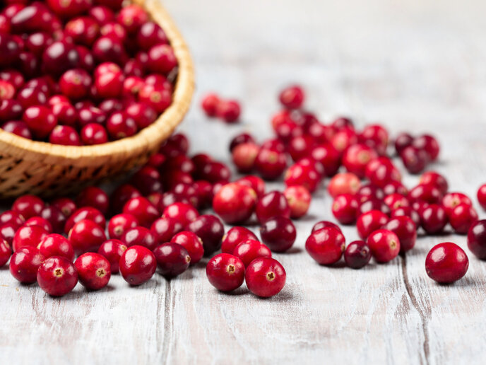 Americans consume 400 million pounds of cranberries each year.
