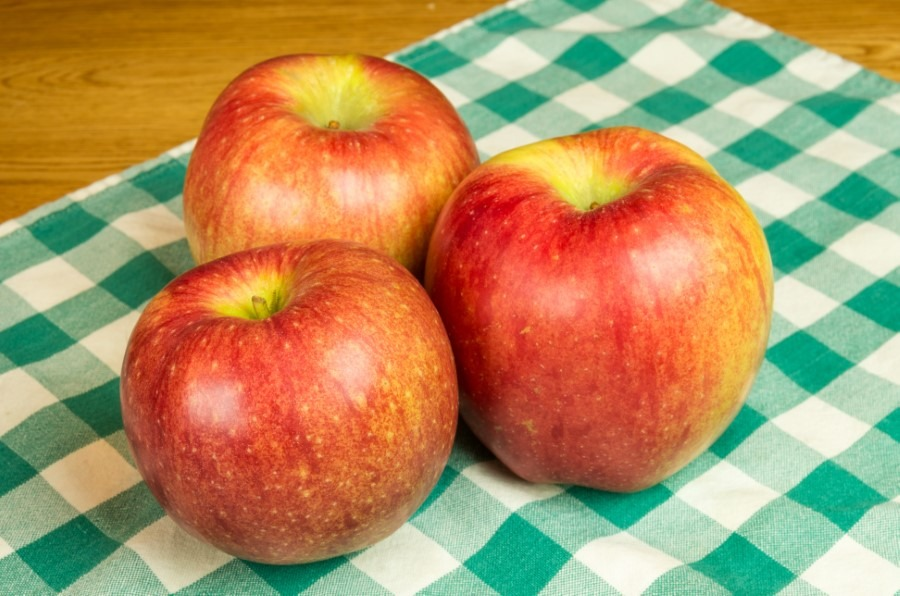 The most expensive apple in the world is Sekai Ichi apple it cost $21.00 each.
