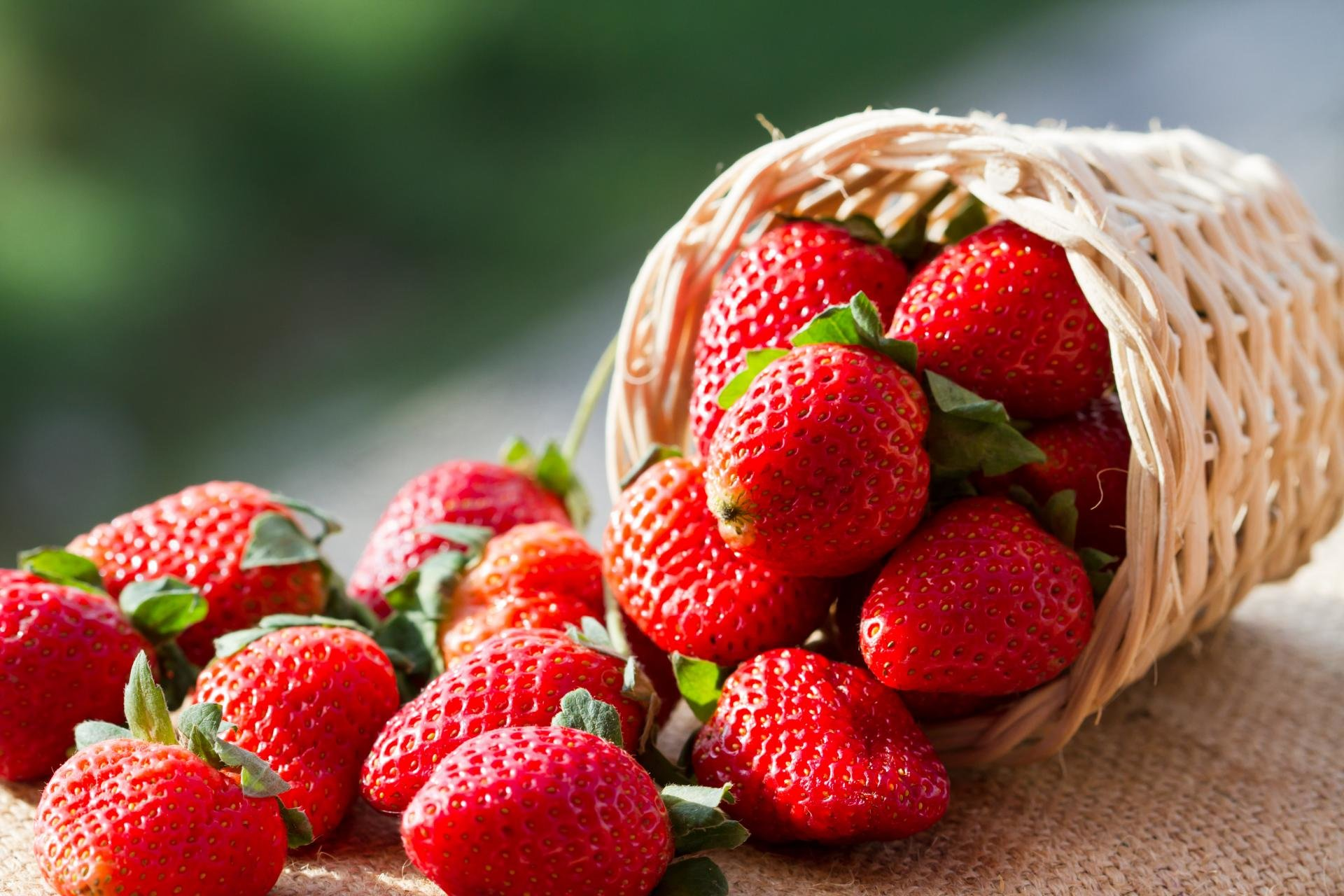 There is a museum dedicated to strawberries alone in Belgium.