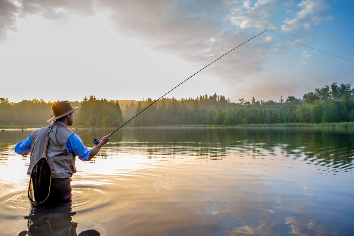 In America, near about 40% of the lakes are too polluted for fishing, swimming or aquatic life.