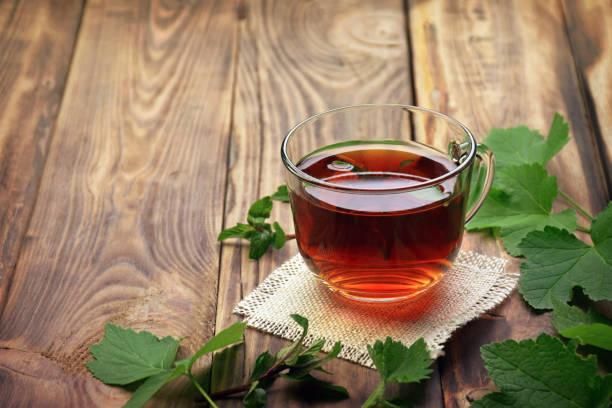 Tea first arrived in Canada