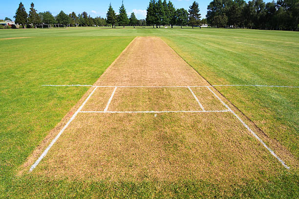 The length of a cricket pitch is 22 yards i.e. 61.31 m2.